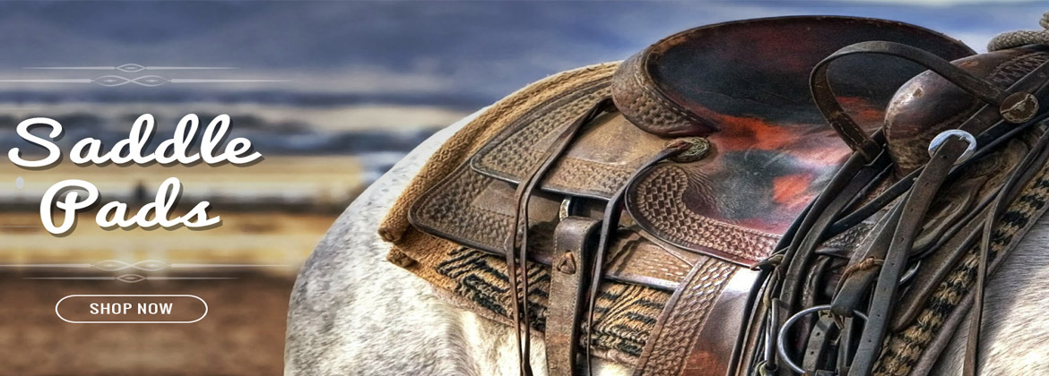 Top Horse Saddles and Accessories